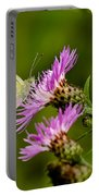 Beautiful Butterfly On Pink Thistle Portable Battery Charger