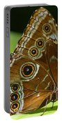 Beautiful Butterfly Wings Of Meadow Brown Portable Battery Charger