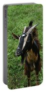 Beautiful Face Of A Billy Goat With Tan And Black Silky Fur Portable Battery Charger
