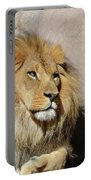 Beautiful Face Of A Lion In The Warm Sunshine Portable Battery Charger