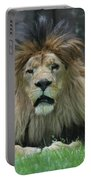 Beautiful Face Of A Male Lion With A Thick Fur Mane Portable Battery Charger