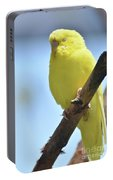 Beautiful Face Of A Yellow Budgie Bird Portable Battery Charger