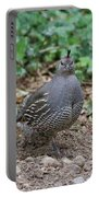 Beautiful Female Quail Portable Battery Charger