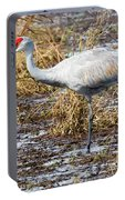 Beautiful Day For A Walk -sandhill Crane   Portable Battery Charger
