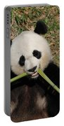 Beautiful Giant Panda Eating Bamboo From The Center Portable Battery Charger