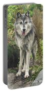 Beautiful Gray Wolf Portable Battery Charger