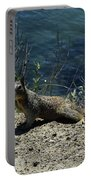 Beautiful Ground Squirrel Standing At The Edge Of The Coast Portable Battery Charger