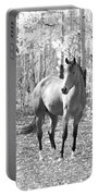 Beautiful Horse In Black And White Portable Battery Charger