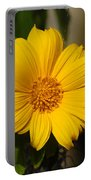 Beautiful In Yellow Portable Battery Charger