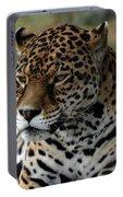 Beautiful Jaguar Portrait Portable Battery Charger