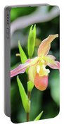 Beautiful Lady Slipper Portable Battery Charger