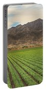 Beautiful Lettuce Field Portable Battery Charger
