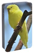 Beautiful Little Yellow Budgie Bird In Nature Portable Battery Charger