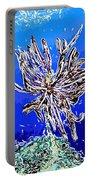 Beautiful Marine Plants 1 Portable Battery Charger by Lanjee Chee