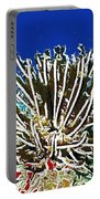 Beautiful Marine Plants 11 Portable Battery Charger by Lanjee Chee