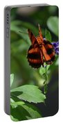 Beautiful Oak Tiger Butterfly On Purple Flowers Portable Battery Charger