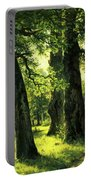 Beautiful Oak Trees Reach To The Skies Portable Battery Charger
