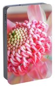Beautiful Pink Shades On A Waratah Flower Portable Battery Charger