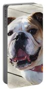 Beautiful Pug. Portable Battery Charger