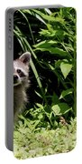 Beautiful Racoon Portable Battery Charger
