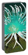 Beautiful Sea Anemone 2 Portable Battery Charger