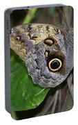 Beautiful Shot Of A Brown Morpho Butterfly Resting  Portable Battery Charger