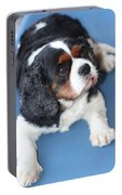 Beautiful Spaniel Portable Battery Charger