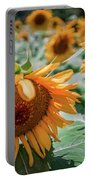 Beautiful Sunflower Field In South Carolina Portable Battery Charger