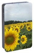 Beautiful Sunflowers Portable Battery Charger
