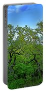 Beautiful Texas View 2 Portable Battery Charger