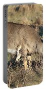 Beautiful Young Deer Portable Battery Charger