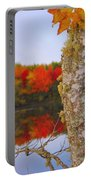 Beauty And The Birch - Nova Scotia Portable Battery Charger