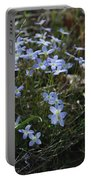 Beauty Blue Flowers Portable Battery Charger