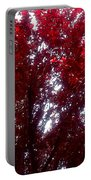 Beauty-full Red  Portable Battery Charger