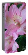 Beauty In Pink Portable Battery Charger