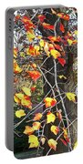 Beauty Of Fall Portable Battery Charger