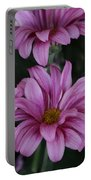 Beauty Of Pink Portable Battery Charger