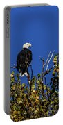 Beauty Of The Bald Eagle Portable Battery Charger