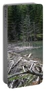 Beaver Dam And Lodge Portable Battery Charger