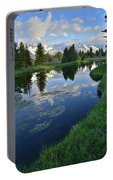 Beaver Dam At Schwabacher Landing Portable Battery Charger