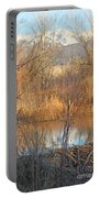 Beaver Dam At Sunset In Colorado            Portable Battery Charger