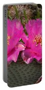 Beavertail Cactus Flowers Portable Battery Charger
