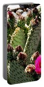 Beavertail Cactus Portable Battery Charger