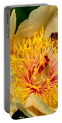 Bee And A Pale Yellow Early Glow Peony Portable Battery Charger
