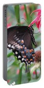 Bee Balm Butterfly Portable Battery Charger