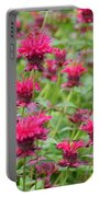 Bee Balm Portable Battery Charger