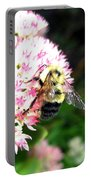 Bee-line 2 Portable Battery Charger