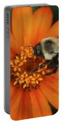 Bee On Aster Portable Battery Charger