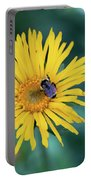 Bee On Curlyhead Goldenweed Portable Battery Charger