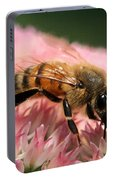 Bee On Flower 6 Portable Battery Charger